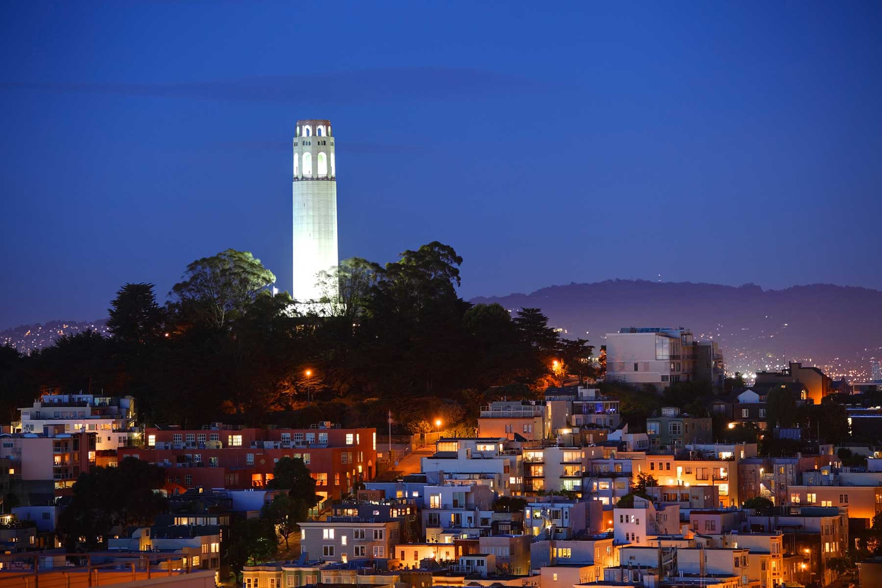 San Francisco City Hall – Lighting Design | Horton Lees ... |Coit Tower Flowers